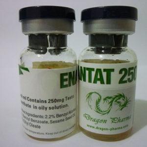 Enanthat 250 - kopen Testosteron enanthate in de online winkel | Prijs
